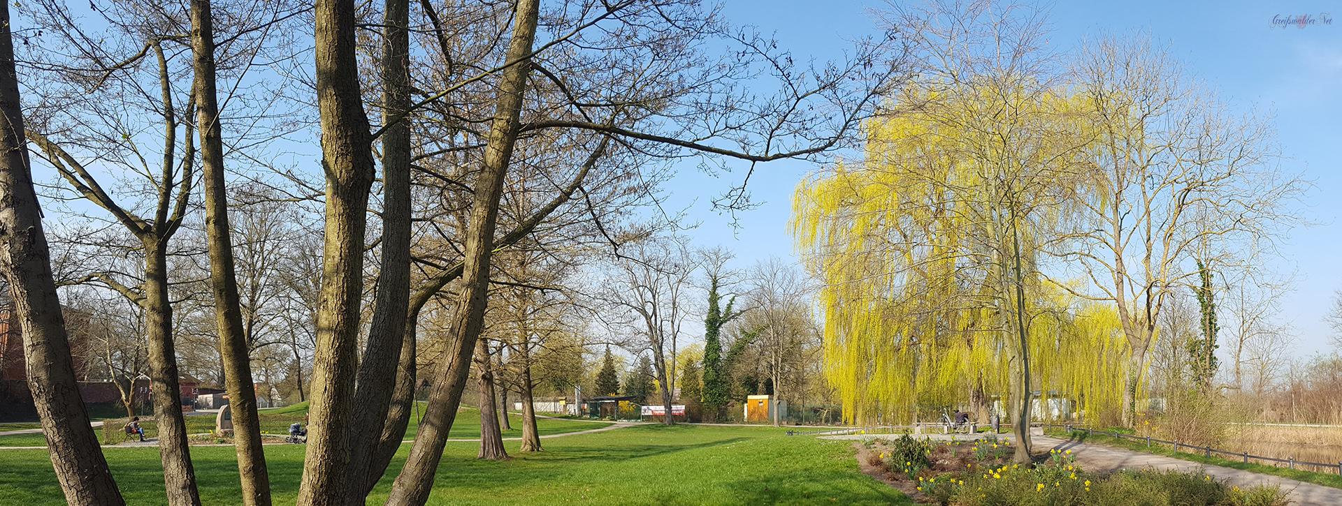 Frühling in den Credner-Anlagen in Greifswald