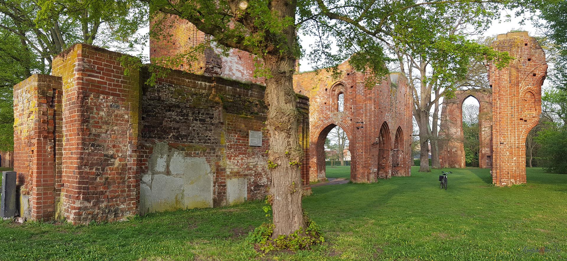 Klosterruine Greifswald-Eldena