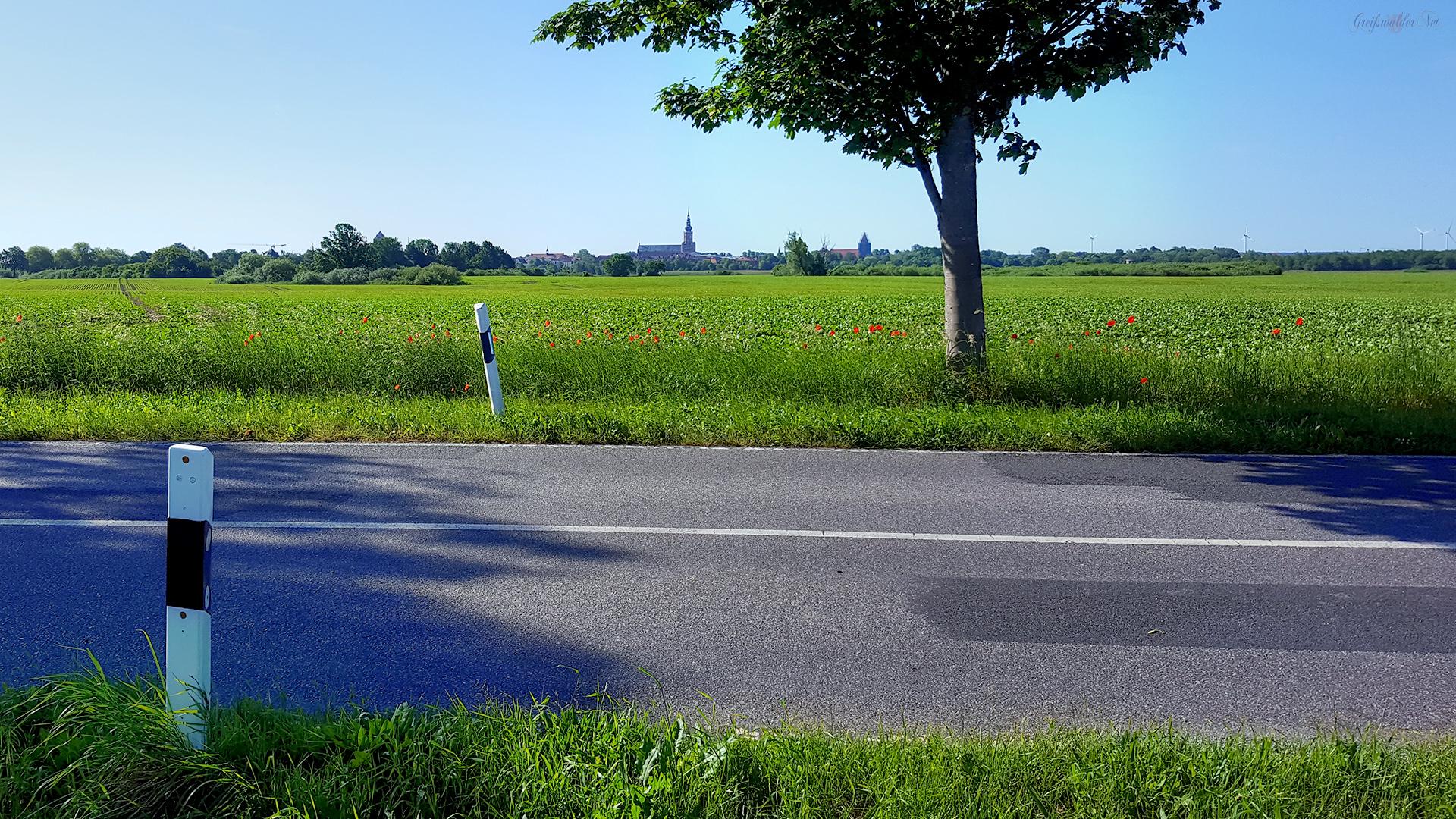 Landstraße - Blick auf Greifswald