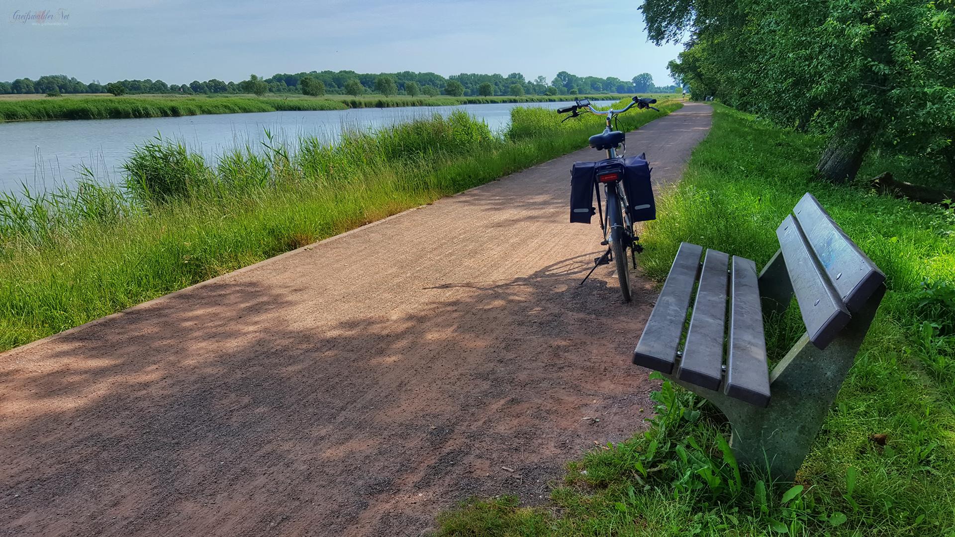 Schattiges Plätzchen auf dem Treidelpfad in Greifswald