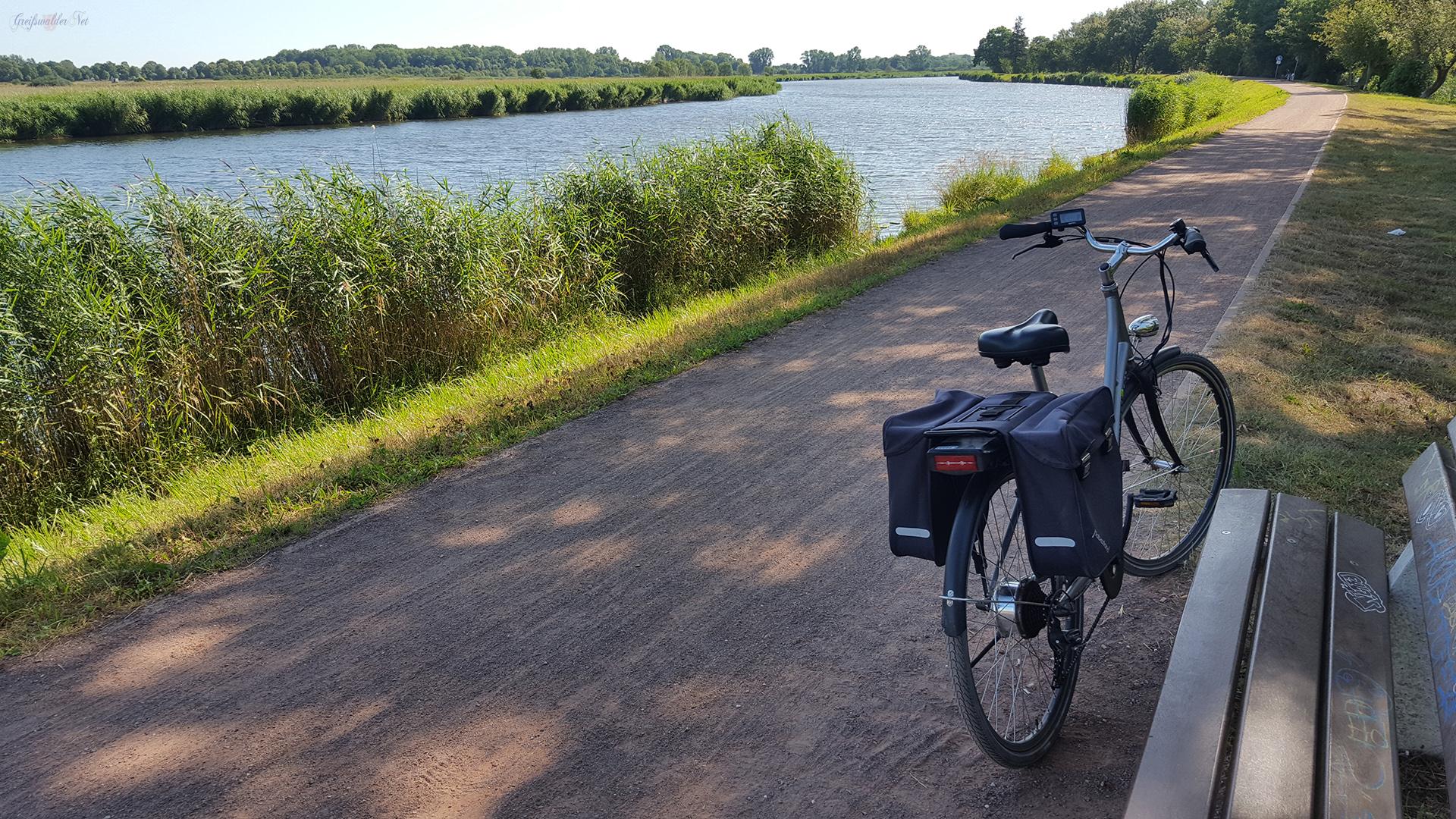 Schattiges Plätzchen auf dem Treidelpfad am Ryck in Greifswald