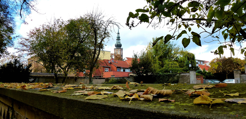 Blick auf den Dom St. Nikolai