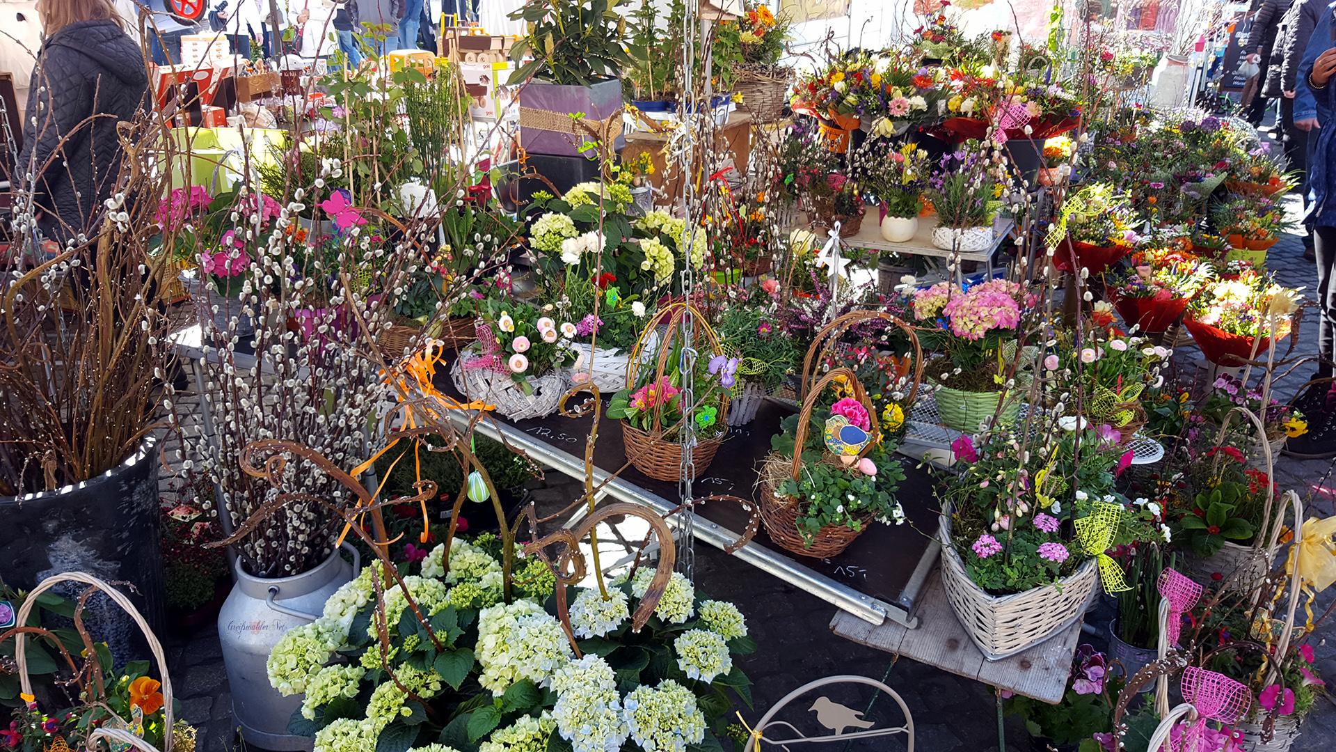 Oster- und Blumenmarkt 2019 in Greifswald
