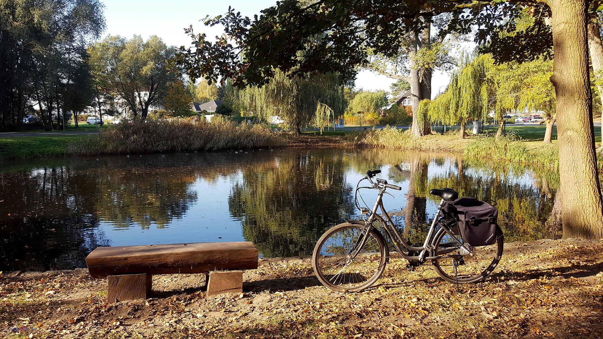 Pause am Teich