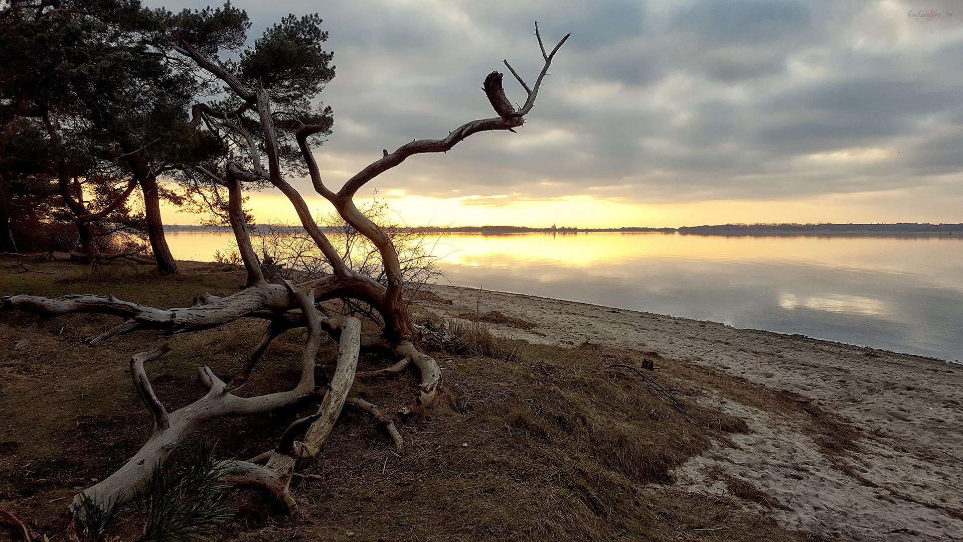 Vorfrühlingsabend am Greifswalder Bodden