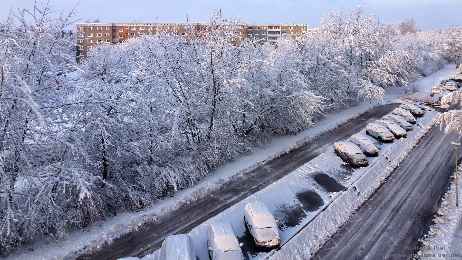 Winter 2013 in Greifswald