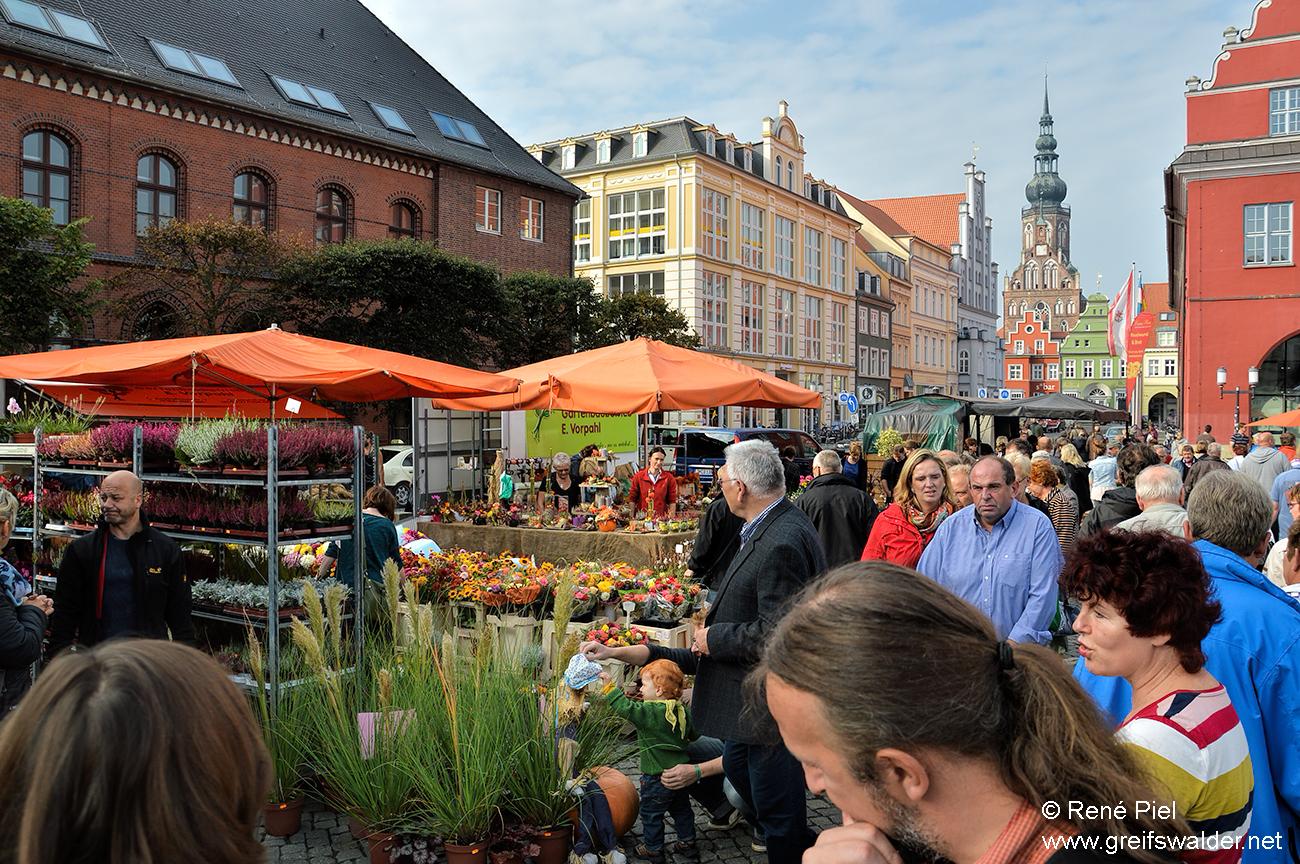 Erntedankmarkt in Greifswald