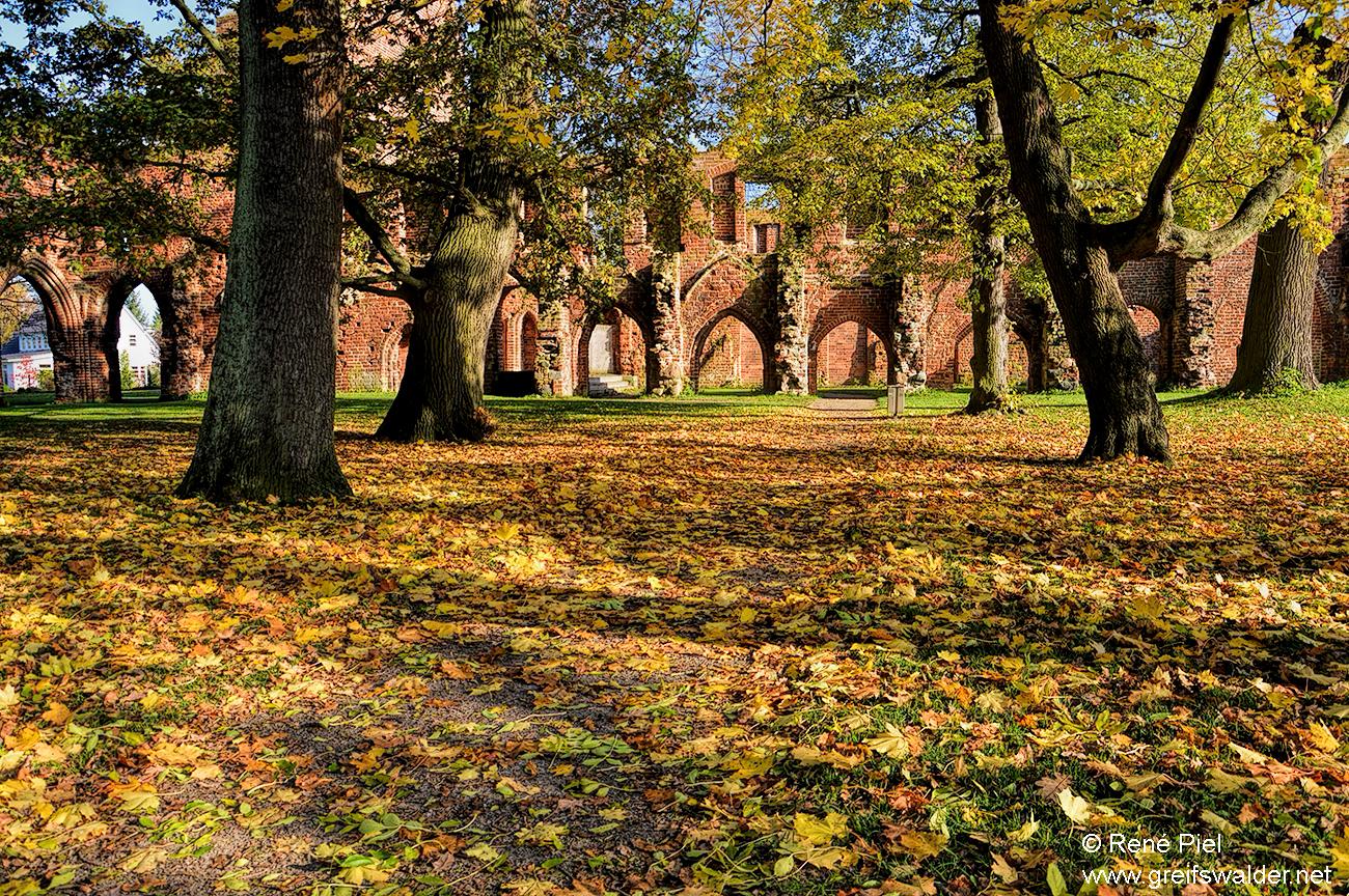 Herbststimmung in der Klosterruine Greifswald-Eldena