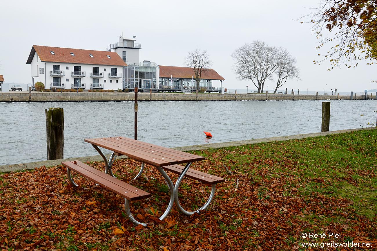 Herbst am Utkiek in Greifswald-Wieck
