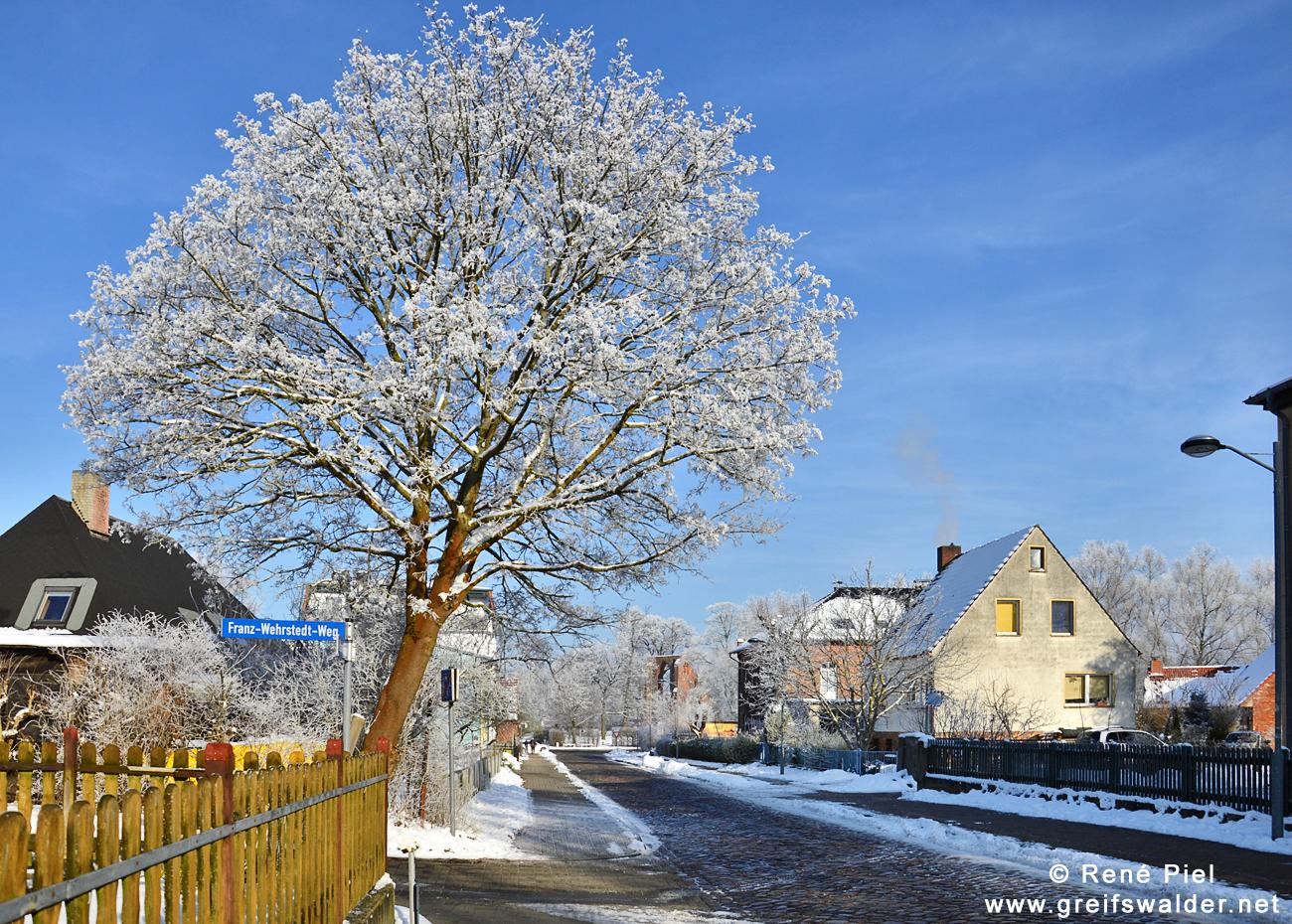 Greifswald-Eldena - Blick auf die Klosterruine