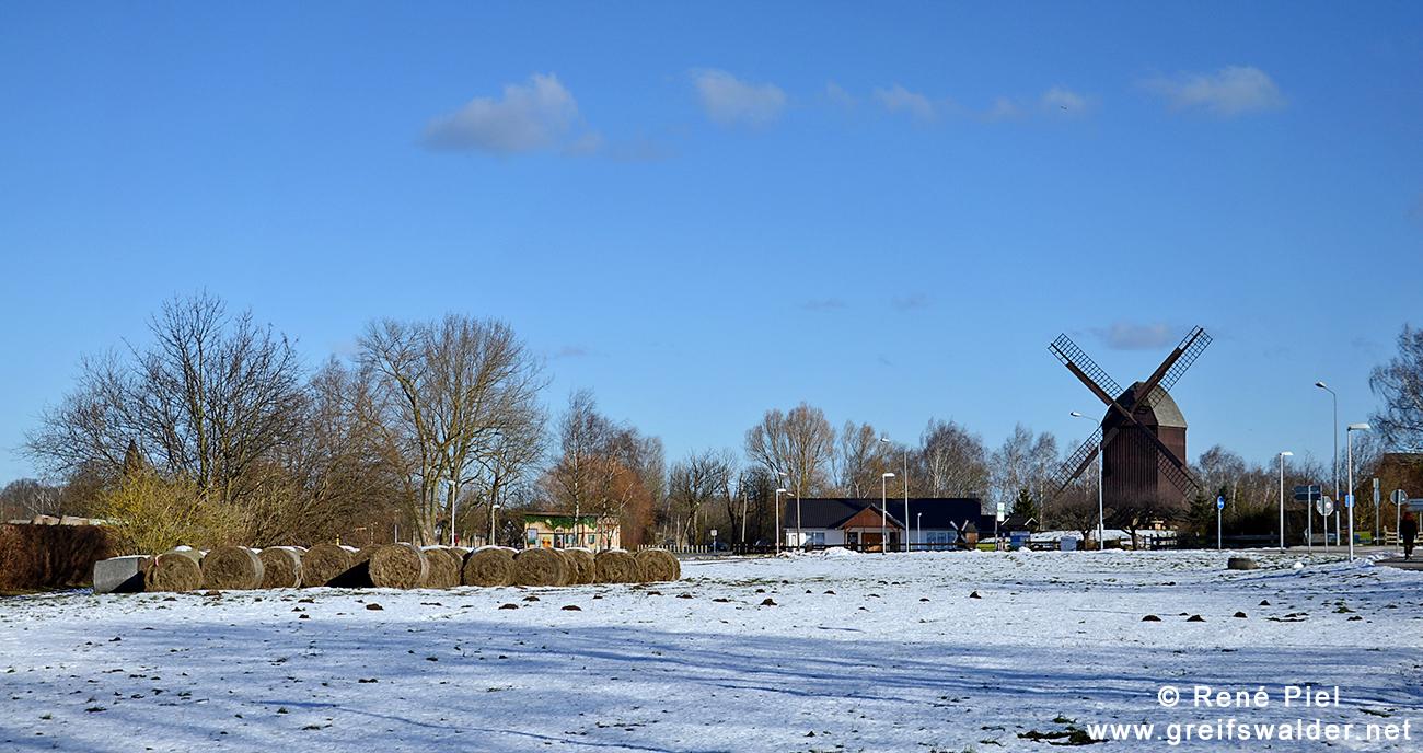 An der Bockwindmühle in Greifswald-Eldena