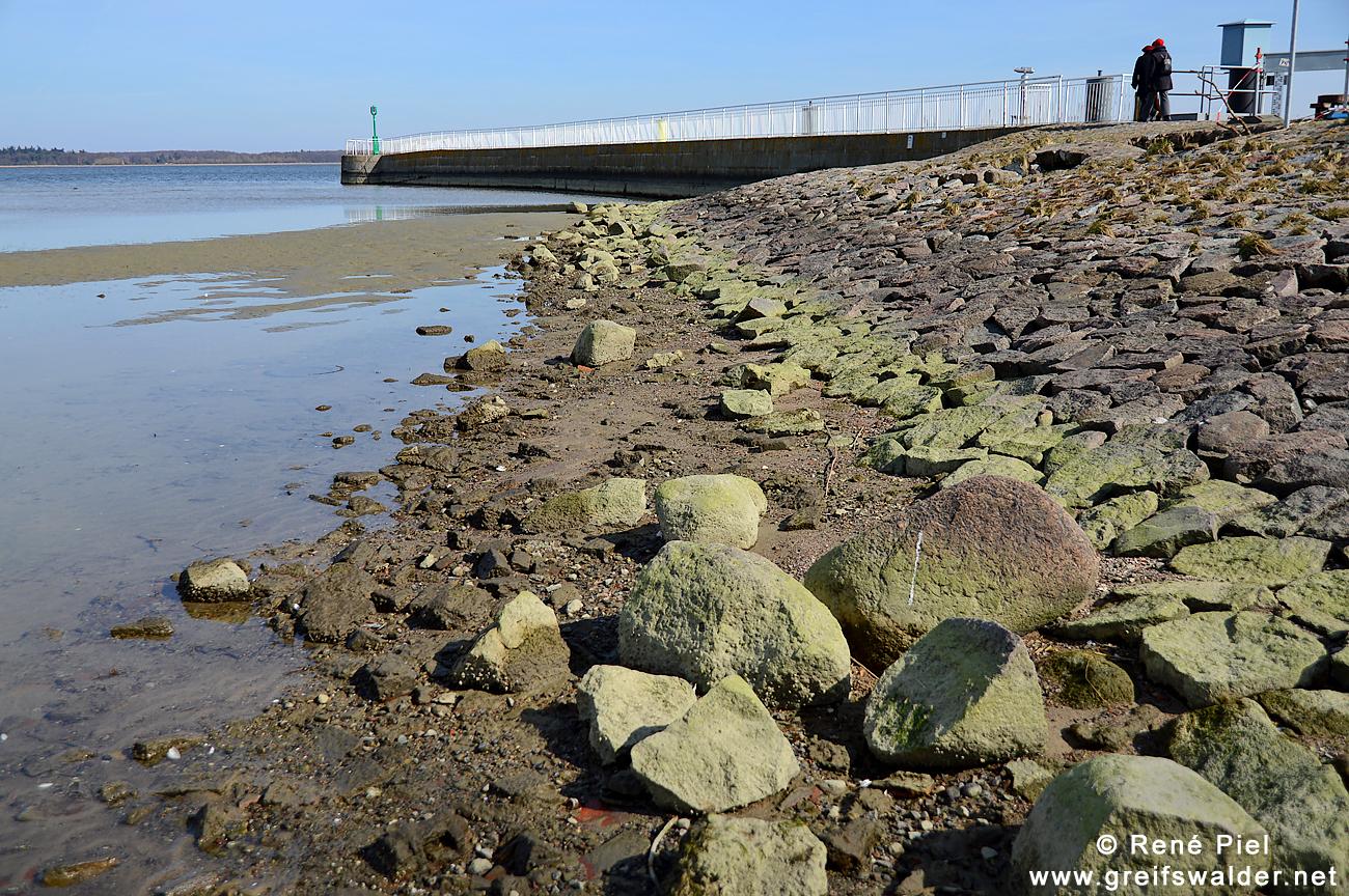 Niedrigwasser an der Mole in Greifswald-Wieck