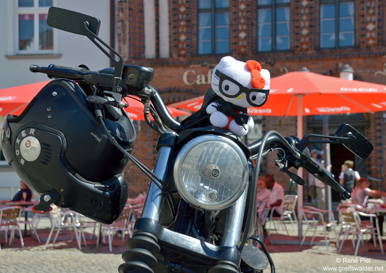 Auf dem Marktplatz in Greifswald