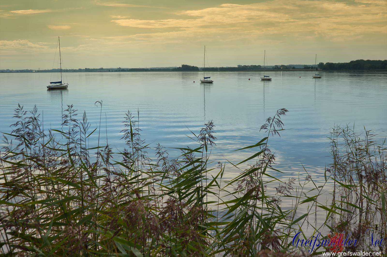 Guten Morgen von der Dänischen Wiek in Greifswald-Wieck