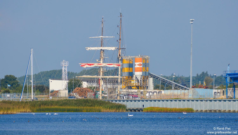 """Segelschulschiff """"Greif"""" im Ölhafen Greifswald-Ladebow"""