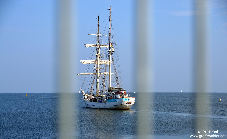 """Segelschulschiff """"Greif"""" - Ausfahrt"""