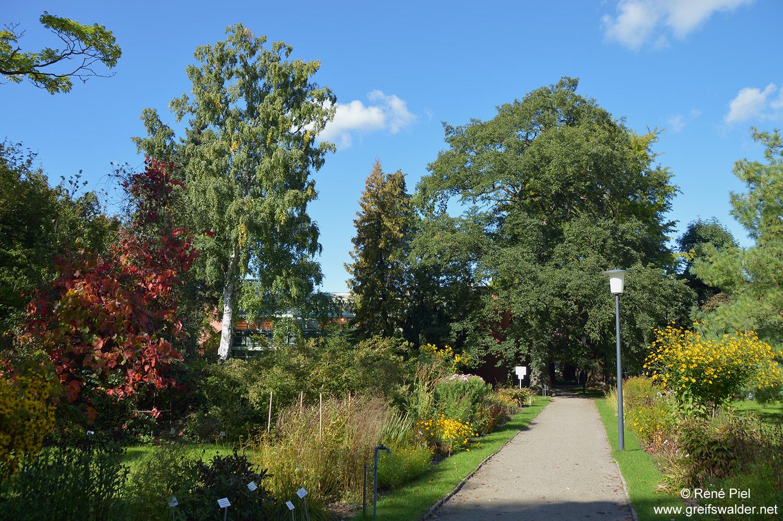Botanischer Garten im Herbst