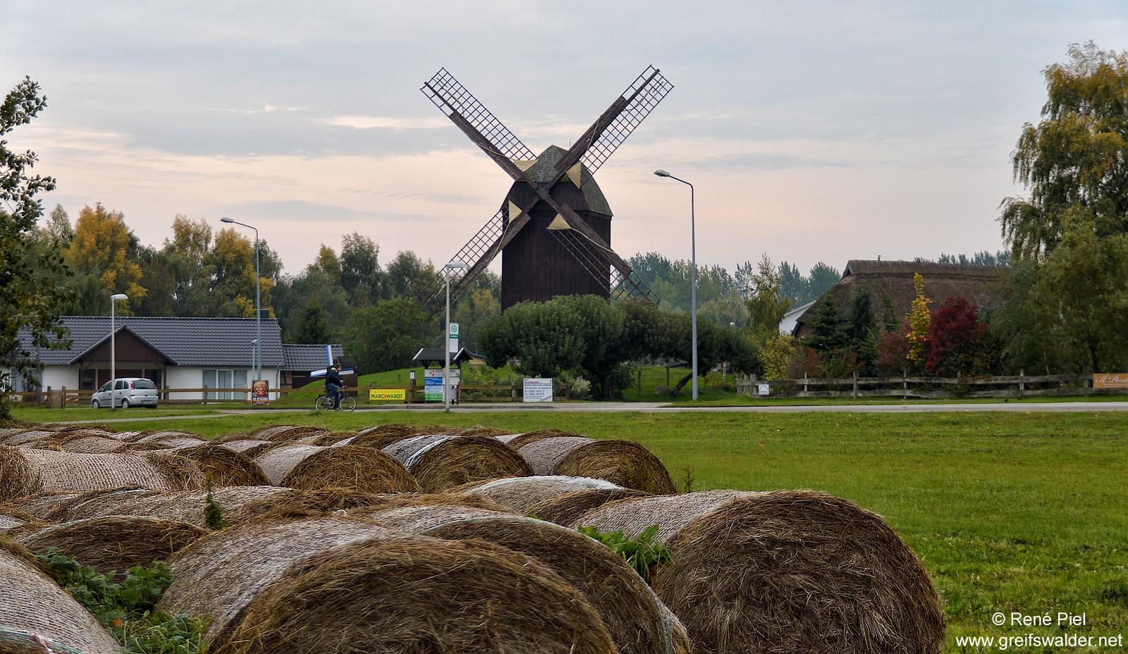 Bockwindmühle Greifswald-Eldena im Herbst