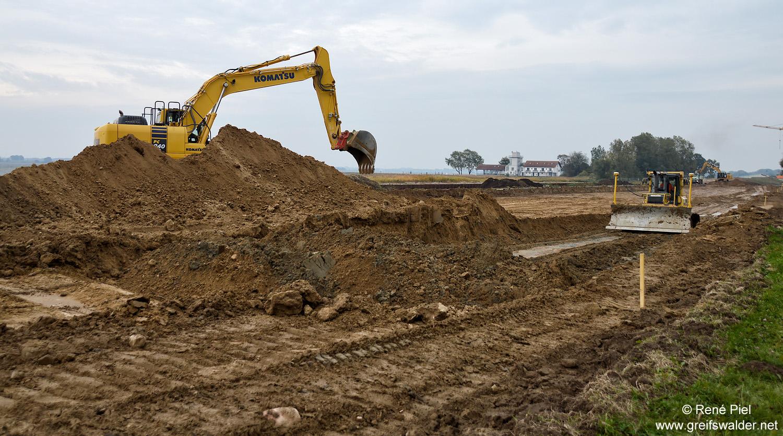 Rückbau des Deiches in Greifswald-Wieck