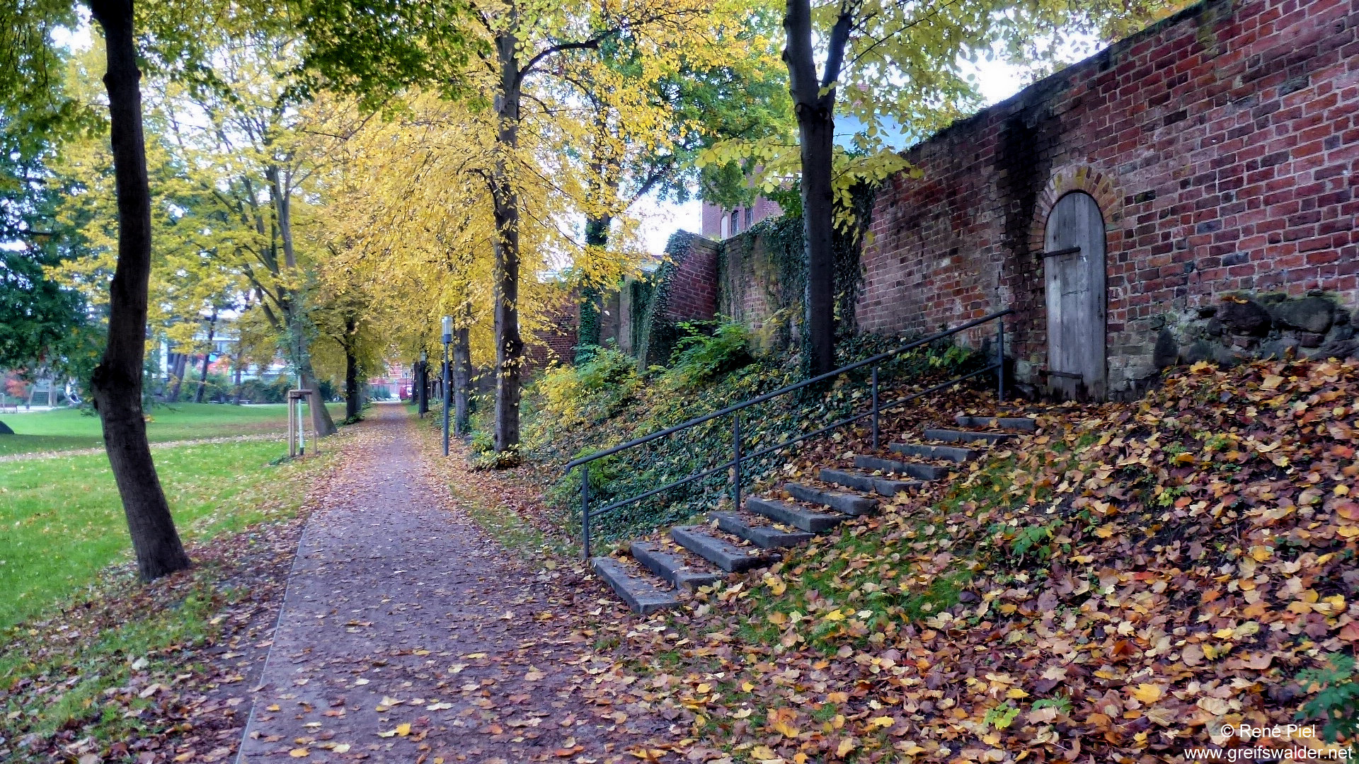 Alte Stadtmauer in Greifswald