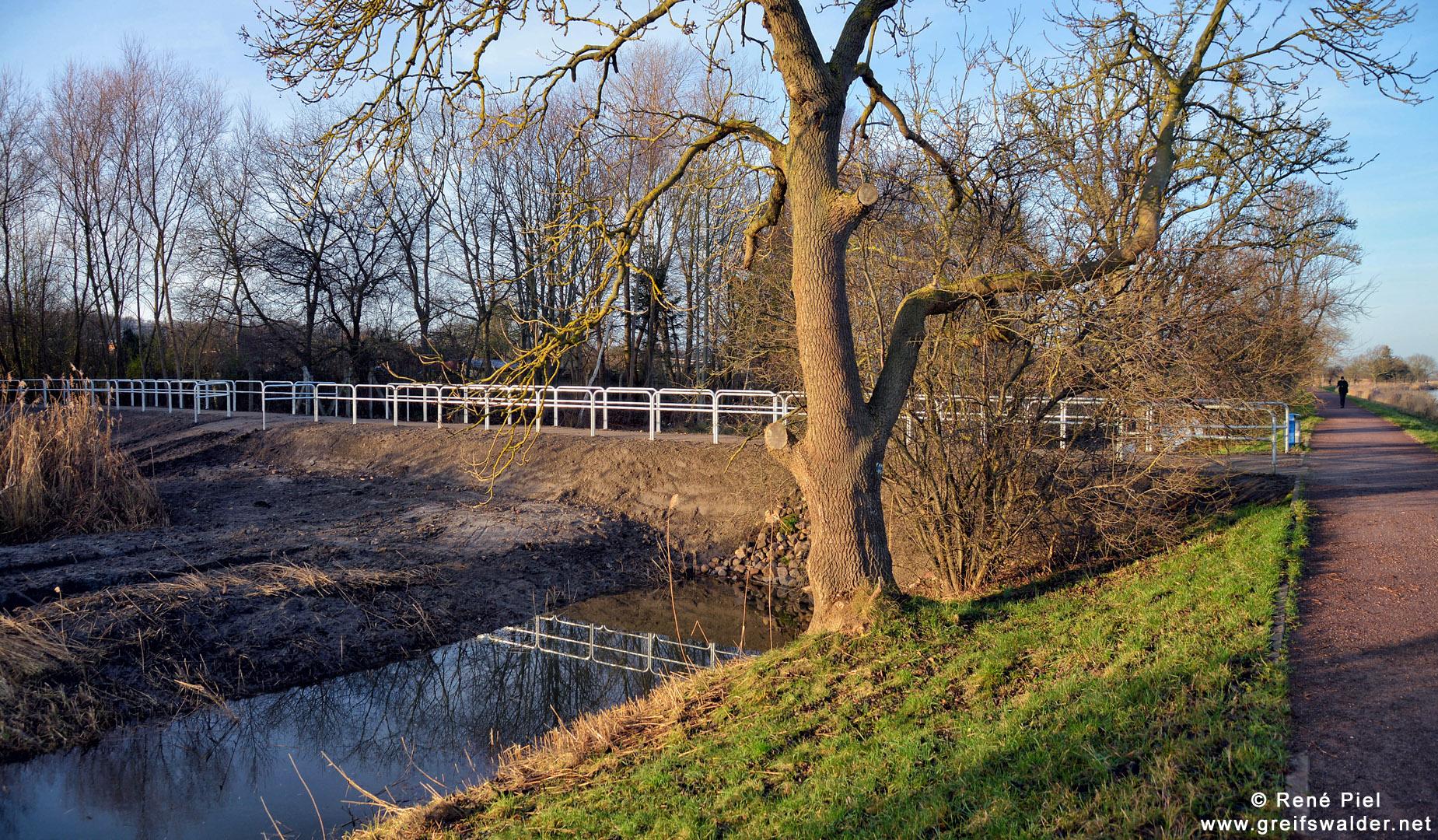 Damm zwischen Treidelpfad und Ostseeviertel-Ryckseite