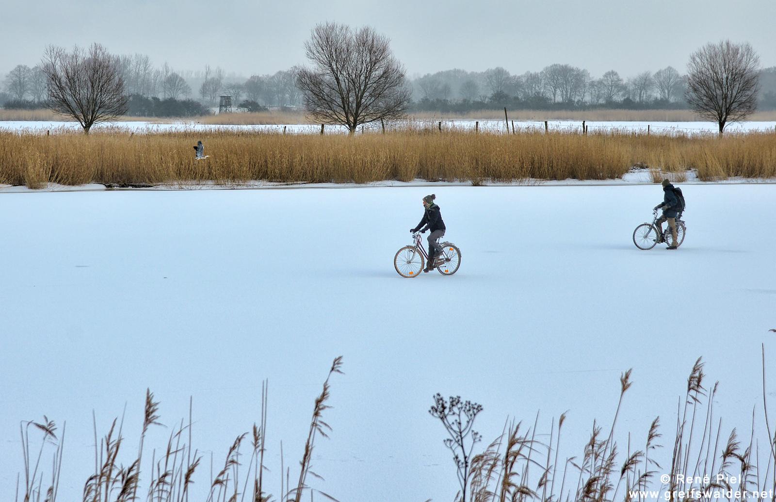 Radfahrer auf dem Ryck