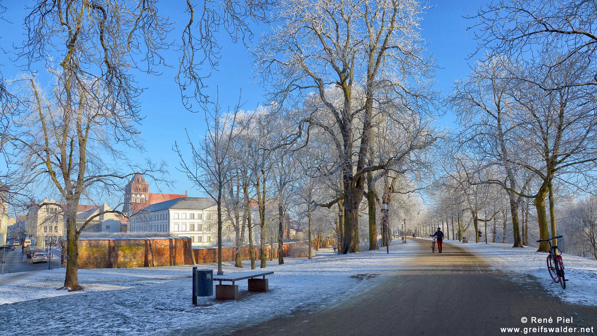 Winterstimmung auf dem Wall in Greifswald