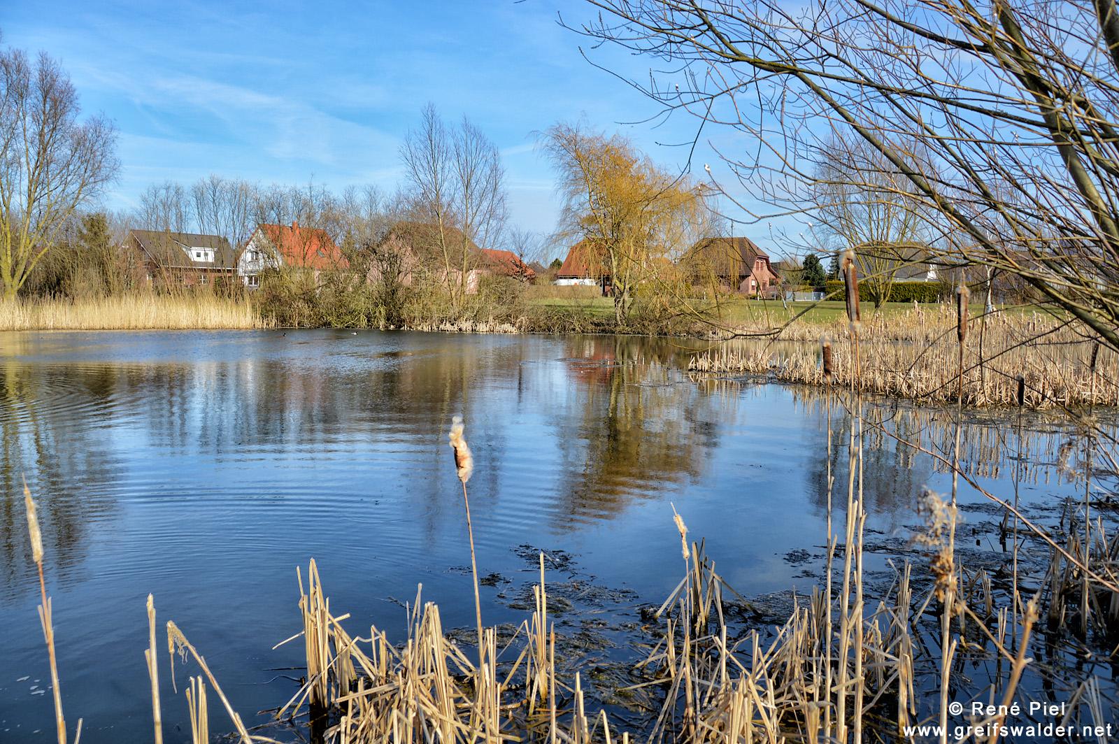 Am Teich in Wackerow