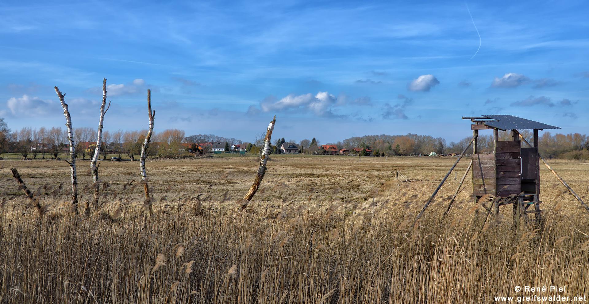 Hochsitz in der Nähe von Greifswald