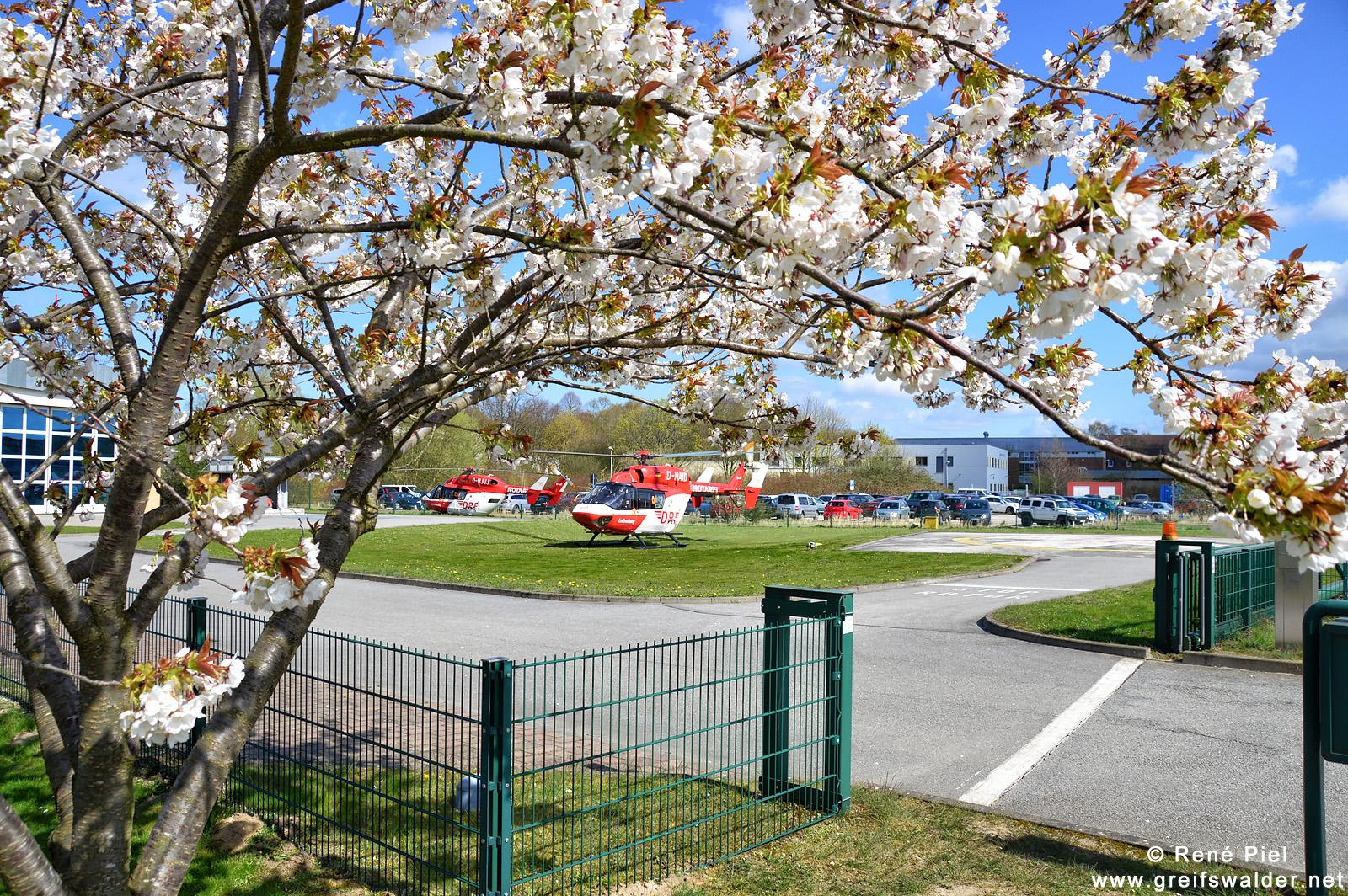 Rettungshubschrauber am Klinikum in Greifswald