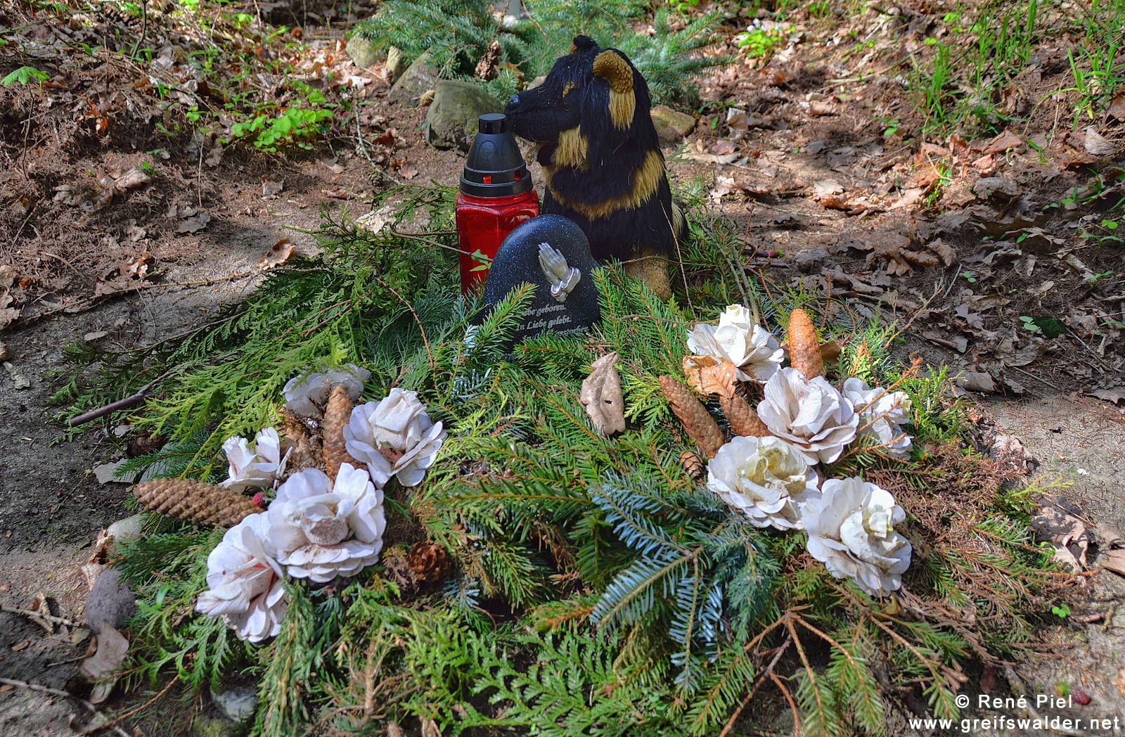 Tierfriedhof im Wald