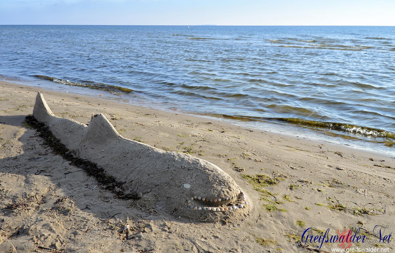 ägypten Haie Am Strand