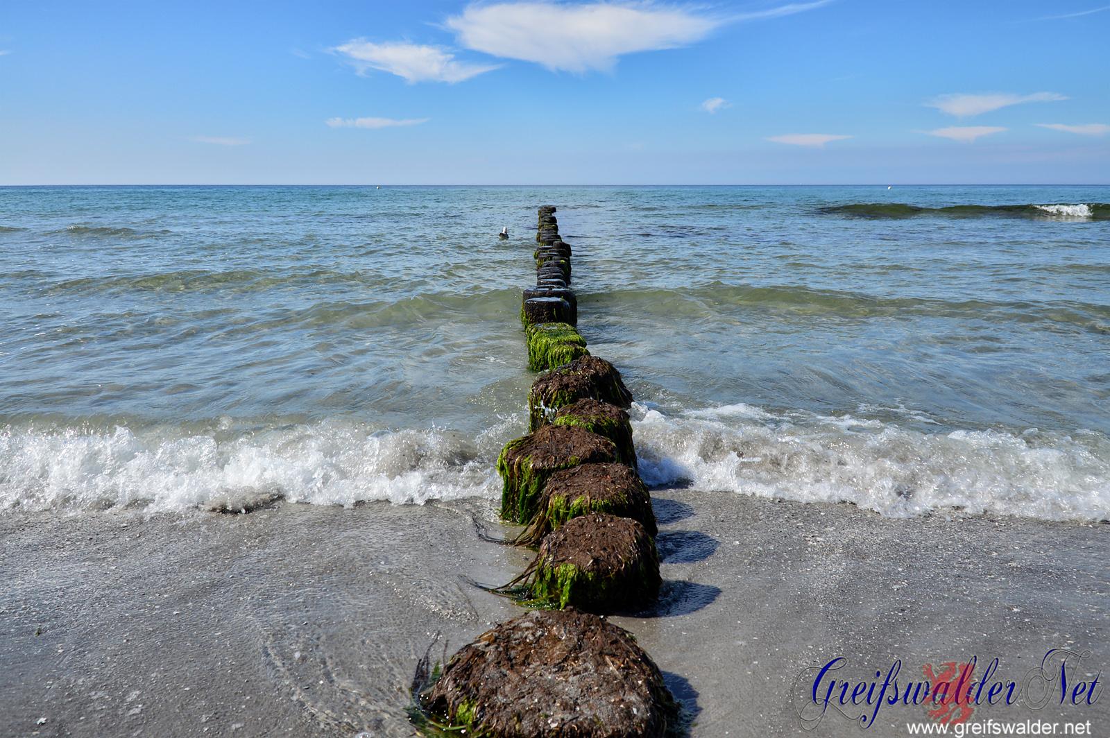 An der Ostsee auf der Insel Hiddensee