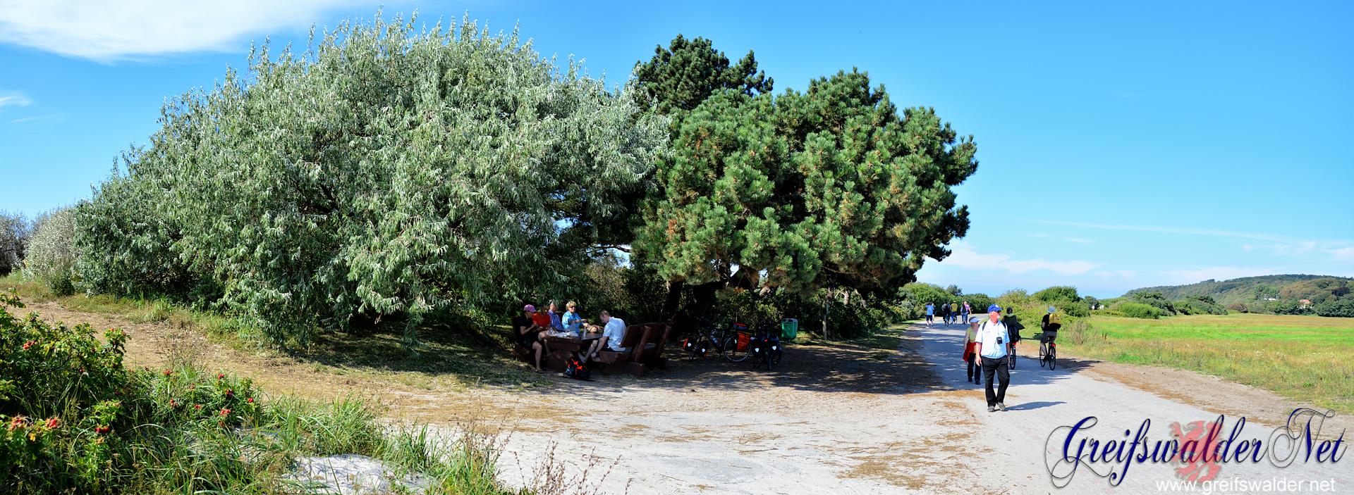 Impressionen von der Insel Hiddensee
