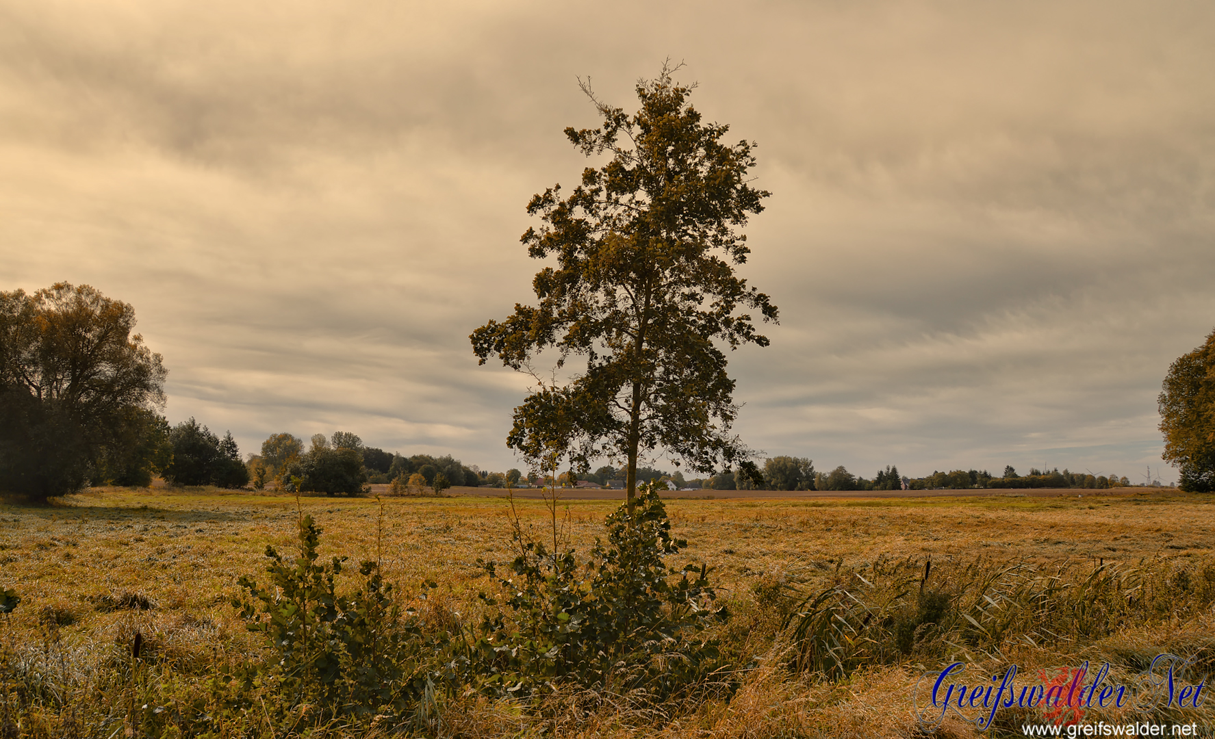 Bewölkter Herbstnachmittag