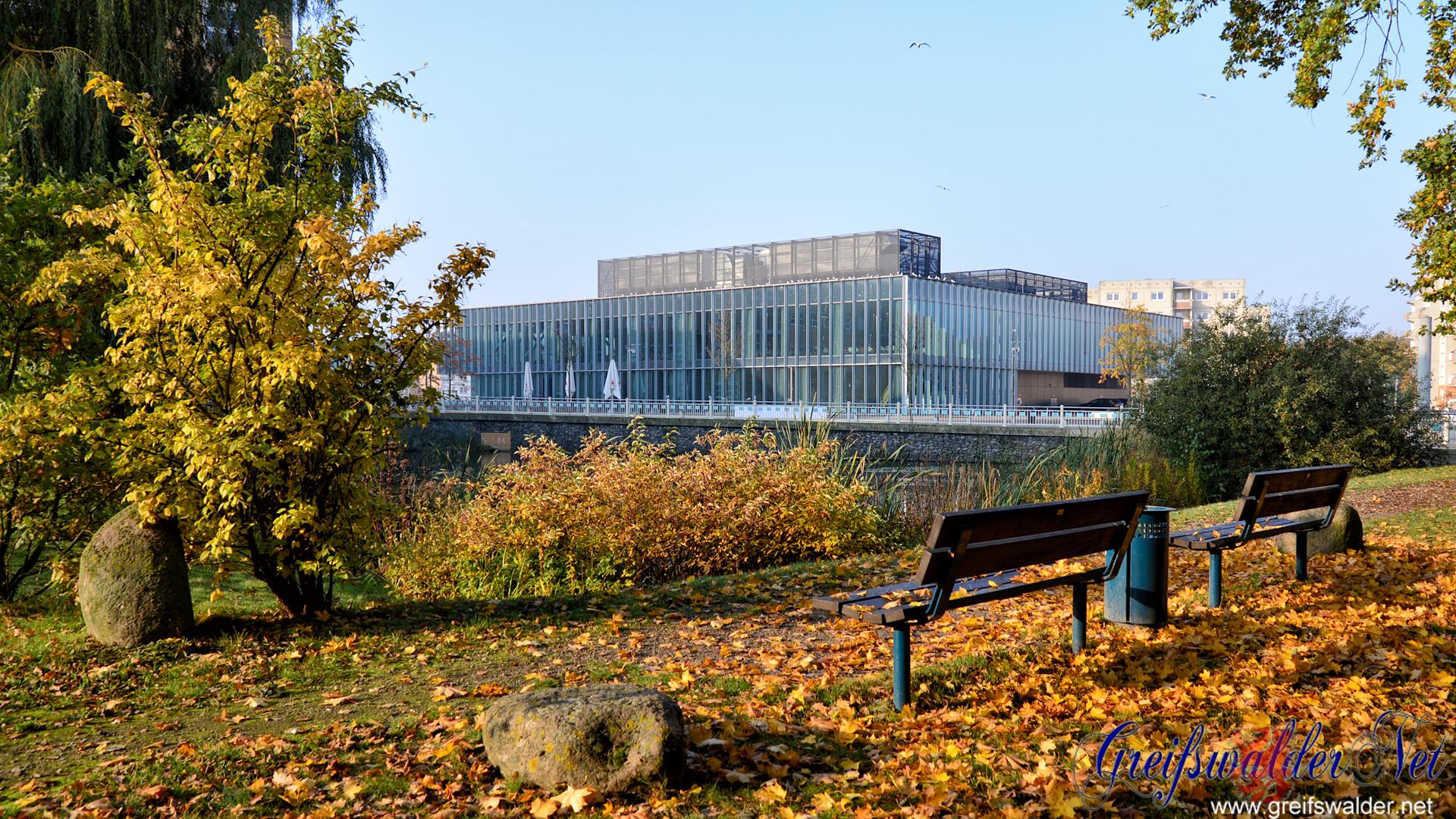 Herbst am Berthold-Beitz-Platz in Greifswald