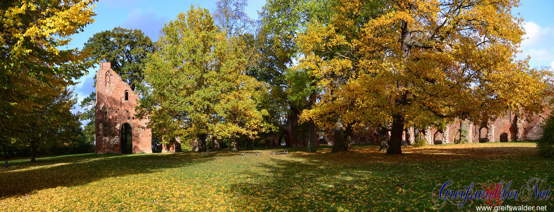 Sonniger Herbst-Samstag in der Klosterruine in Greifswald-Eldena