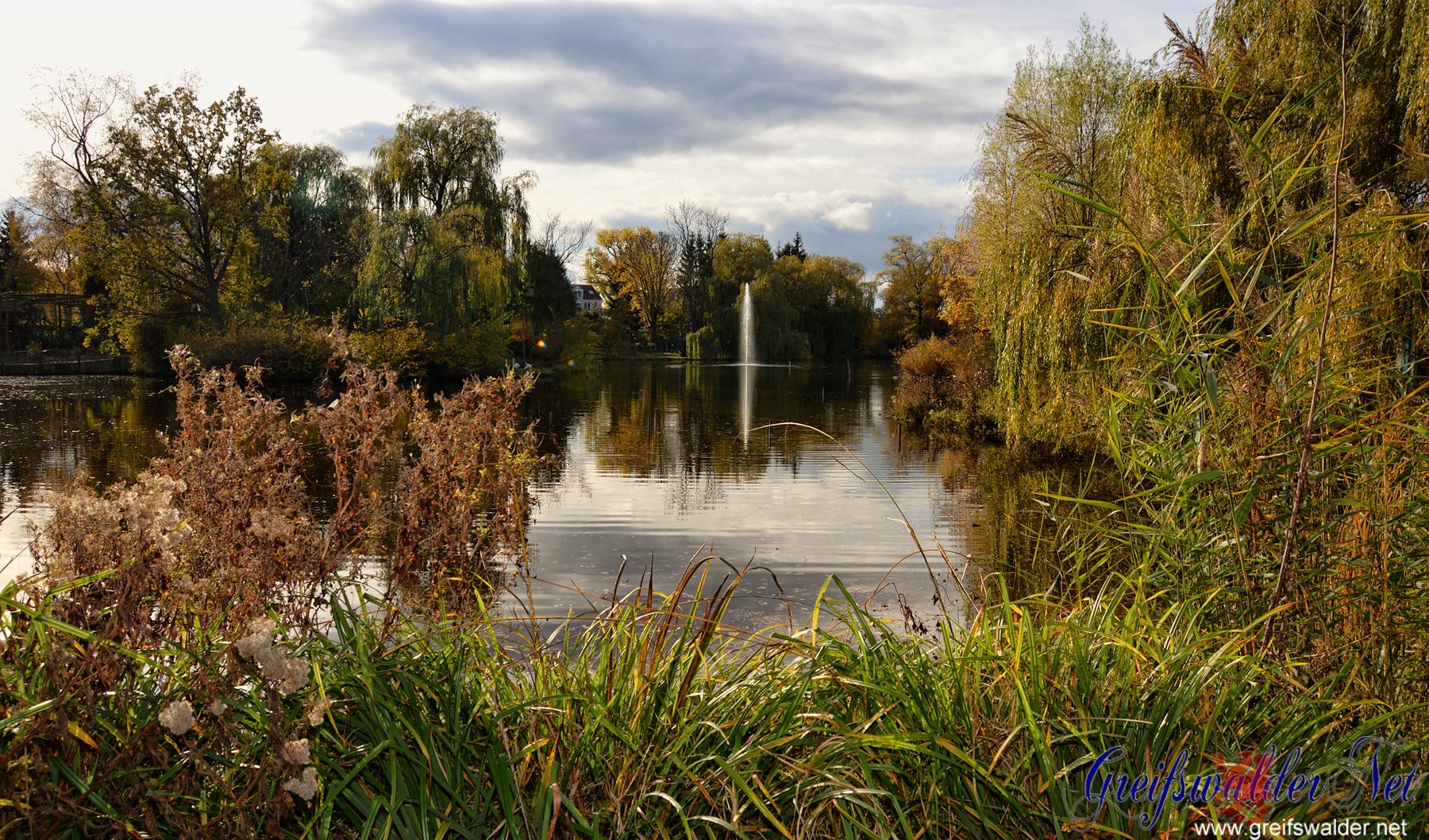 Herbststimmung im Tierpark Greifswald