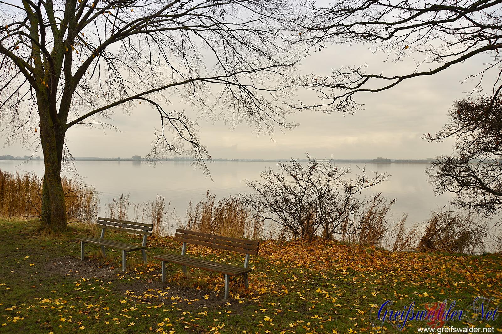 Herbst an der Dänischen Wiek in Greifswald-Wieck