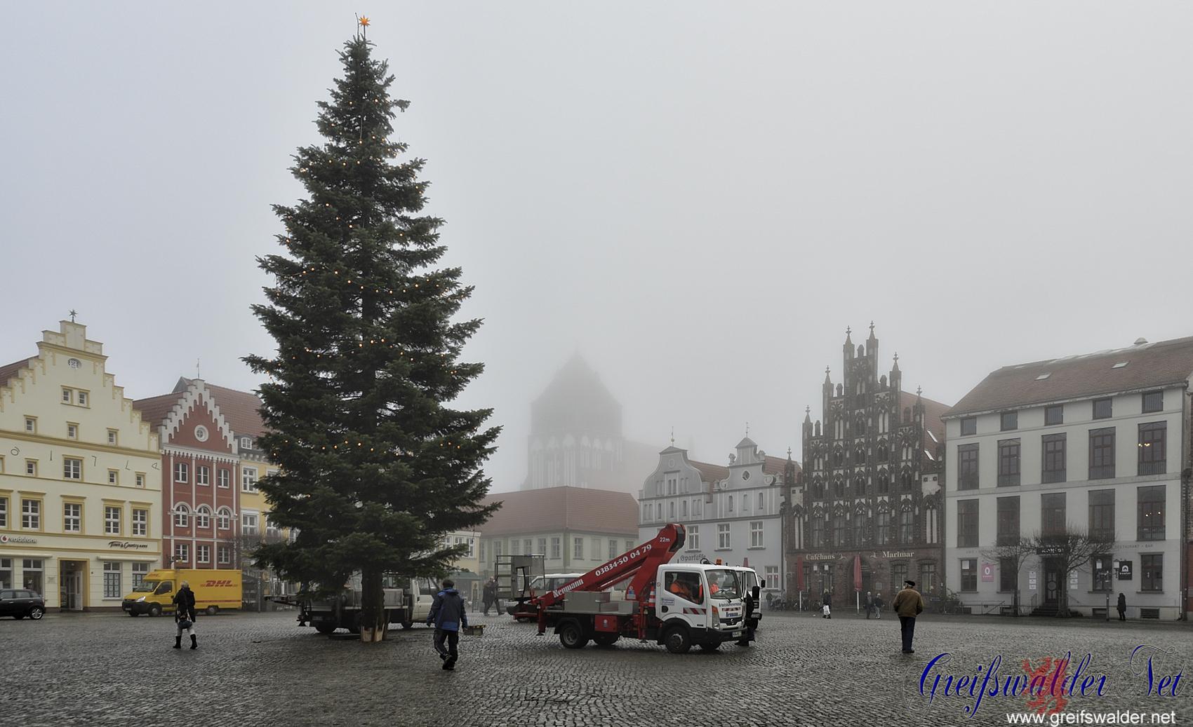 Weihnachtsbaum auf dem Marktplatz in Greifswald