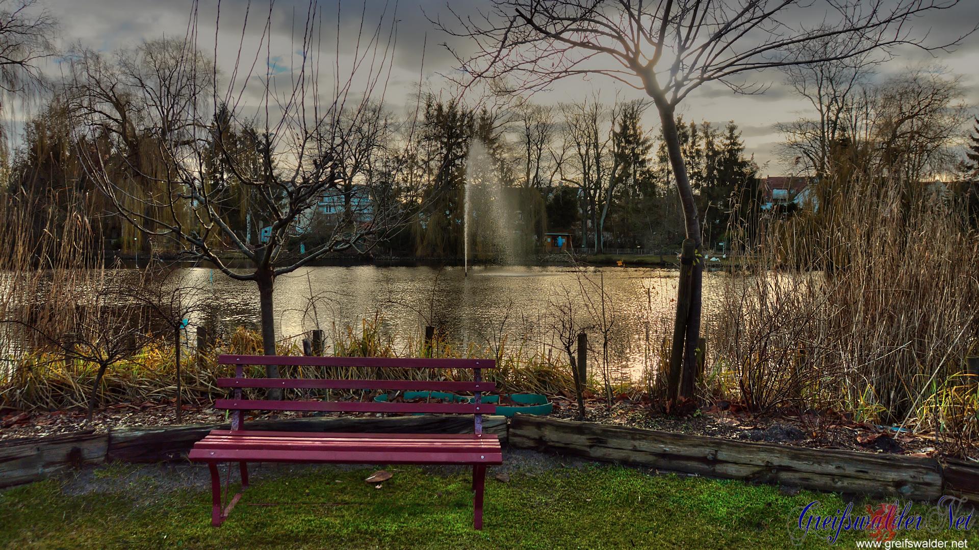 Teich im Tierpark Greifswald