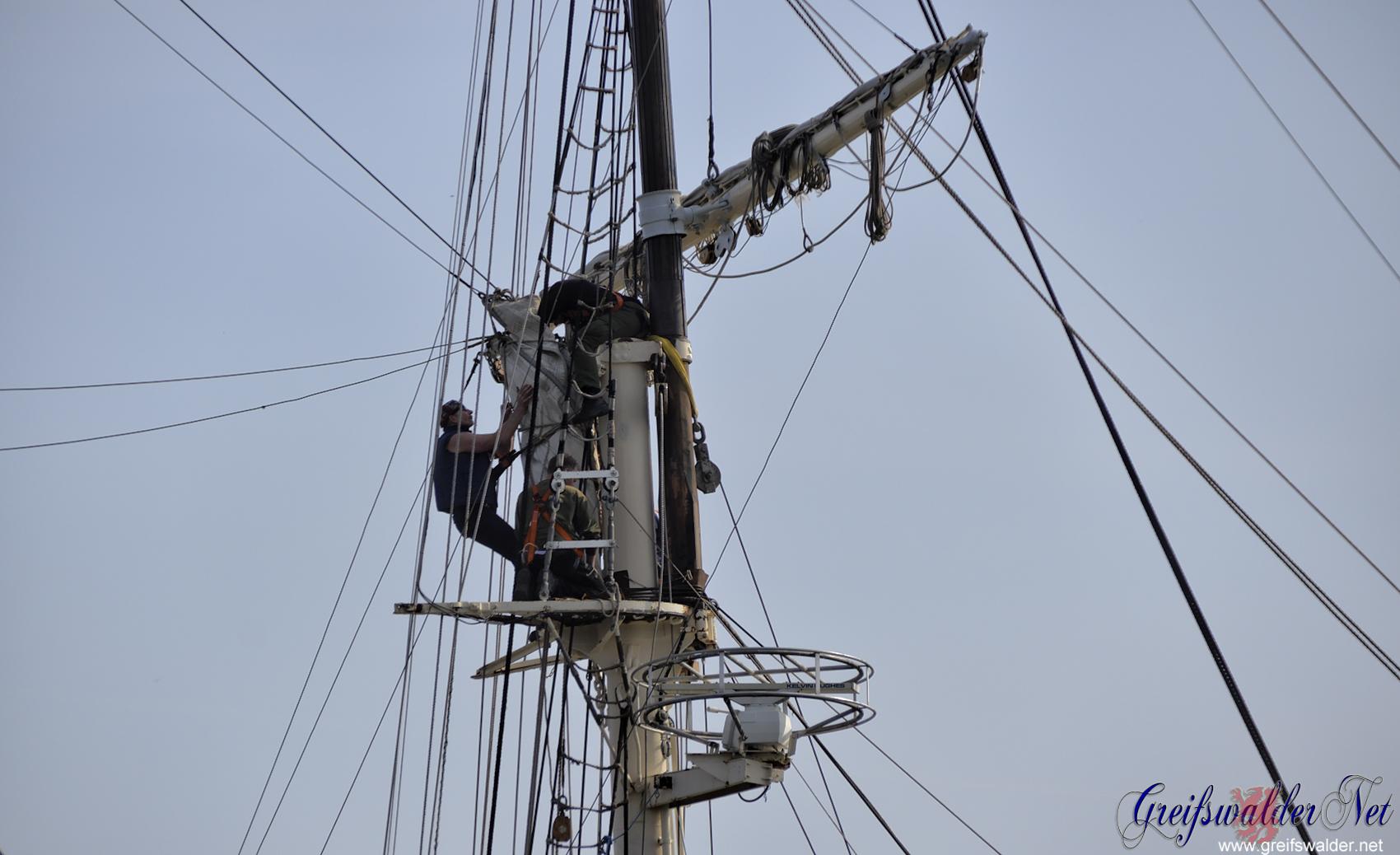 Segelschulschiff Greif aufgetakelt