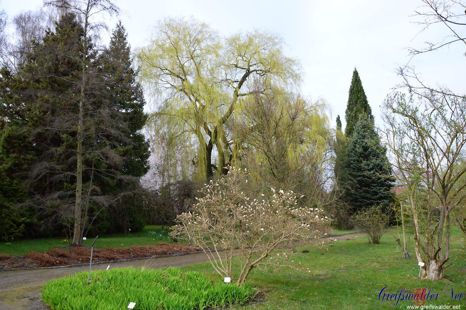 grün und bunt im Arboretum