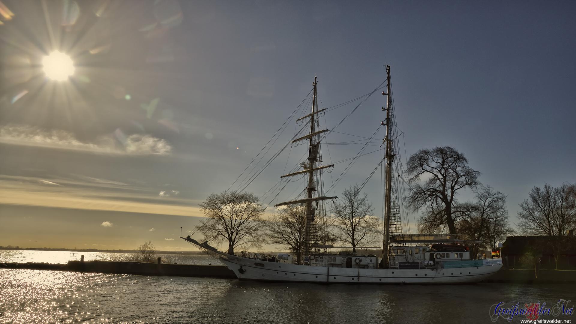 """Segelschulschiff """"Greif"""" in der Frühlingssonne"""