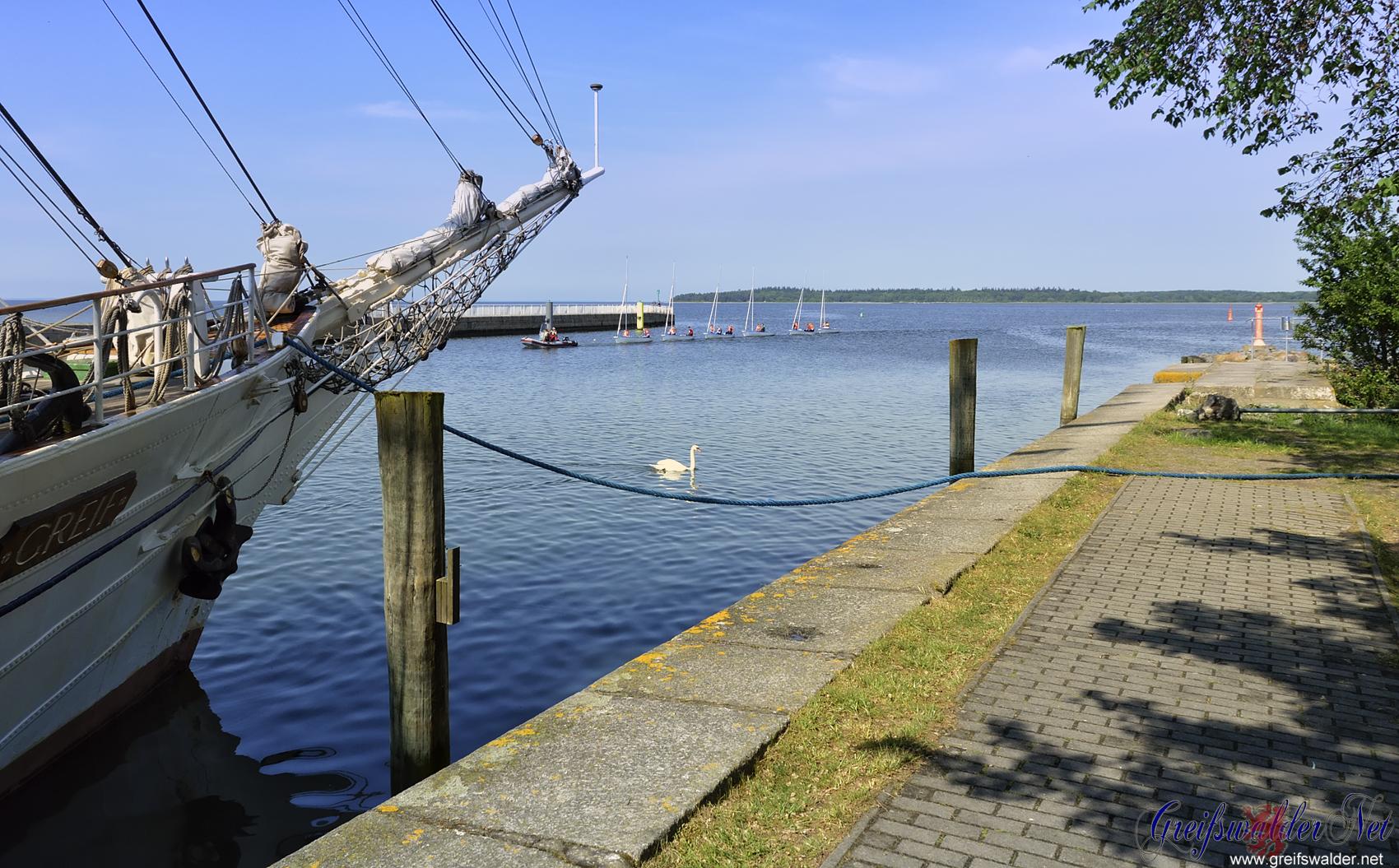 Nachmittag zwischen 2 Regenschauer an der Mole in Greifswald-Wieck