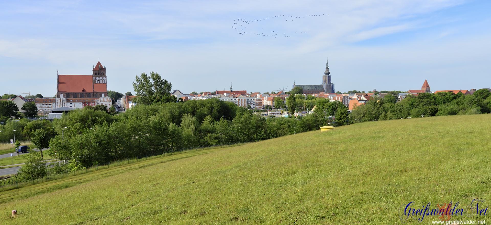 Blick auf die Universitäts- und Hansestadt Greifswald