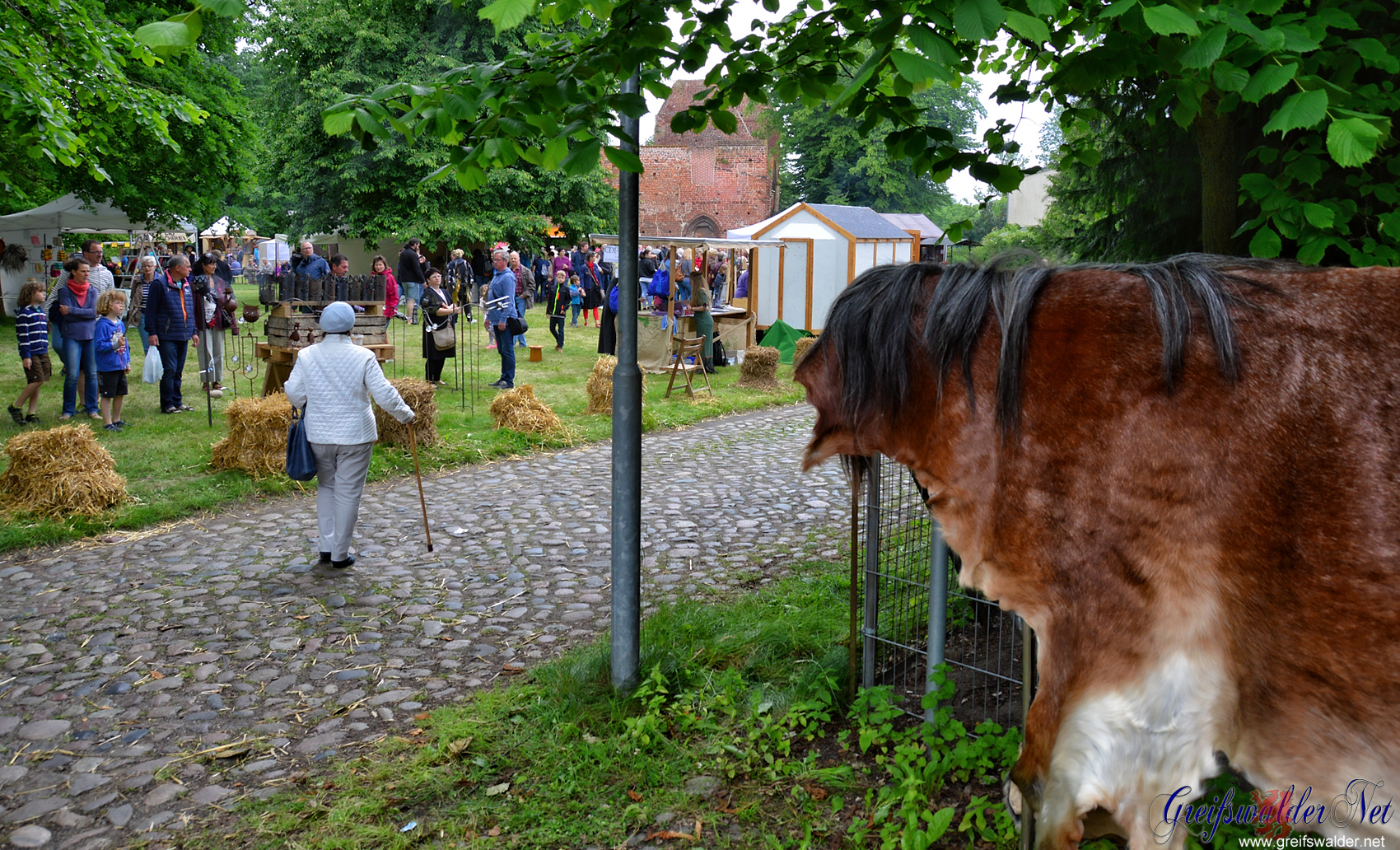 4. Klostermarkt in Greifswald-Eldena
