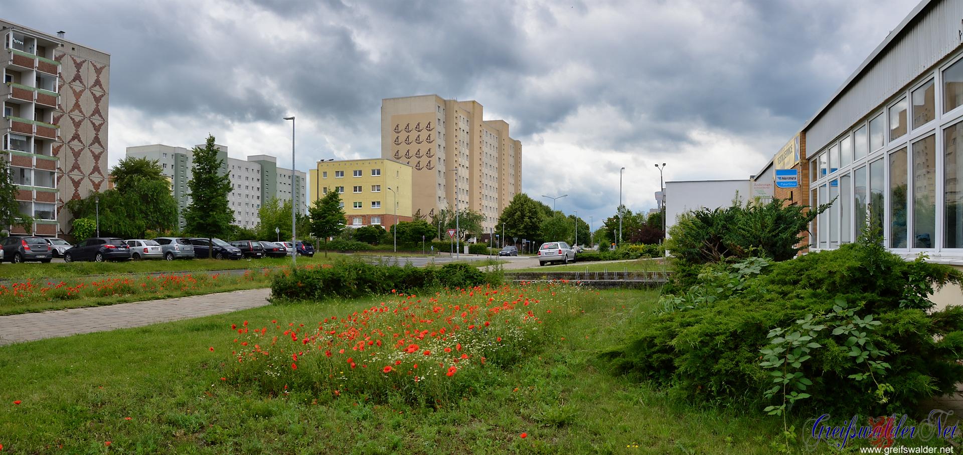 Greifswald - Schönwalde I