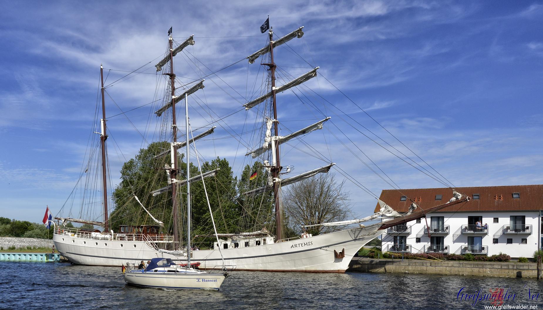 Segler - groß und klein - in Greifswald-Wieck