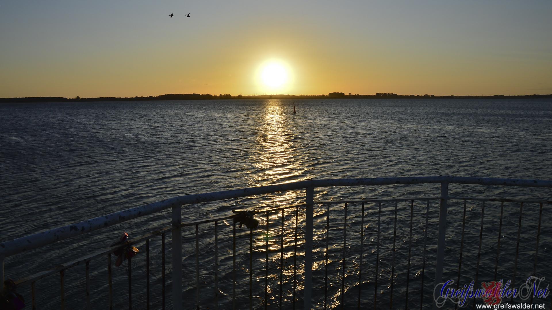 Sonnenaufgang in Greifswald-Wieck